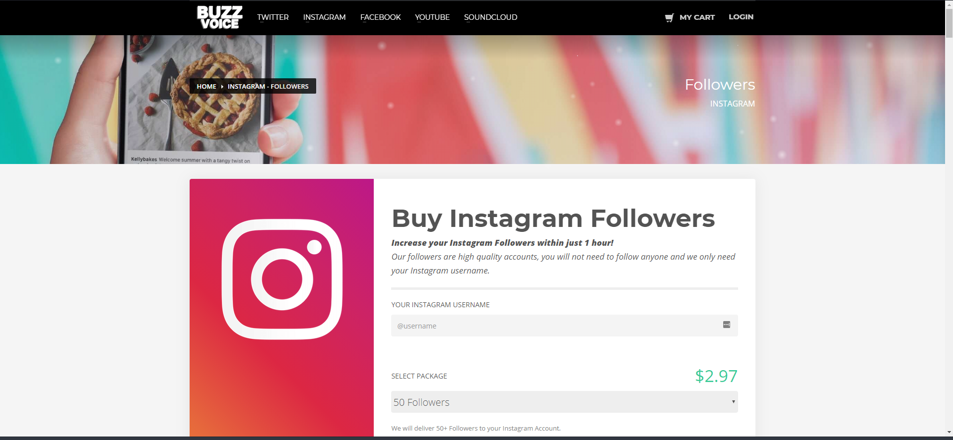 BuzzVoice's page for increasing Instagram followers