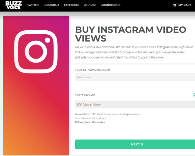 Buy Instagram Views from BuzzVoice